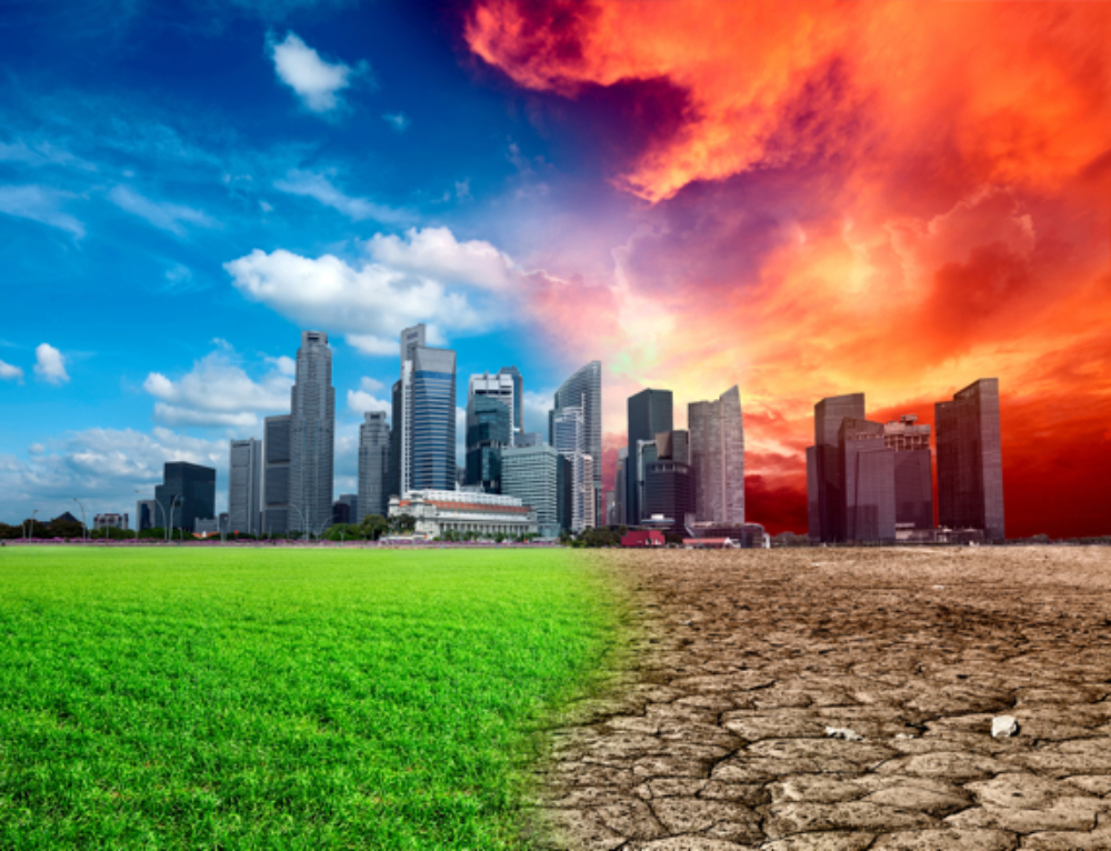 Forward-Thinking Companies Capitalize on the Risks and Opportunities of Climate Change